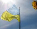 Инвестиции в отраслевые фонды Украины
