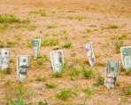 Риск инвестиций в землю