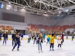 Строительство ледового комплекса открыто-закрытого типа для занятий зимними видами спорта на платной основе в Ярославле