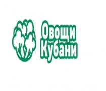 Инвестиции в тепличный бизнес Краснодарского края