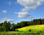 Инвестиции в крупные земельные наделы: критерии удачного выбора