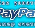Обзор способов, которые помогут узнать номер счета PayPal