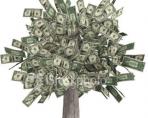 Дам в долг под расписку от частного лица