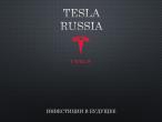 Предлагаю инвестировать в инновационный и сверх перспективный проект: тест-драйв автомобиля Tesla