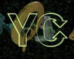 Обменник YChanger: что о нём нужно знать, особенности сервиса, честные отзывы пользователей