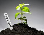 Инвестиции в бизнес идеи и стартап